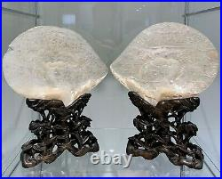 LARGE PAIR of CHINESE SHELL CARVINGS ON STANDS